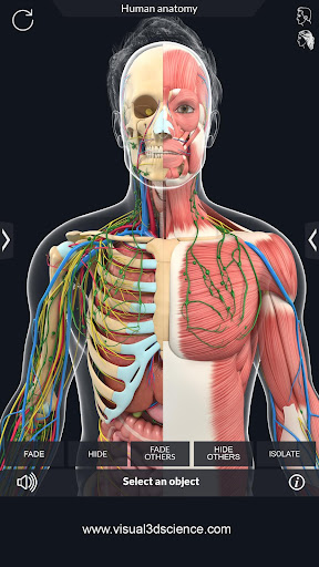 Human Anatomy  Paidproapk.com 5