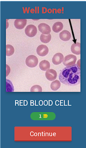 Hematology quiz App  For Pc | How To Install – [download Windows 7, 8, 10, Mac] 2