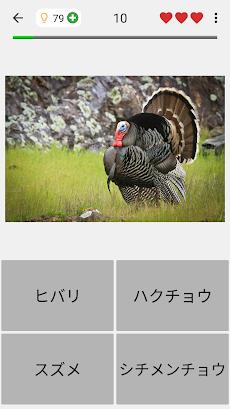 動物クイズゲーム : 動物園ですべての哺乳類、鳥類、爬虫類、魚を学ぶ!そして恐竜!のおすすめ画像4