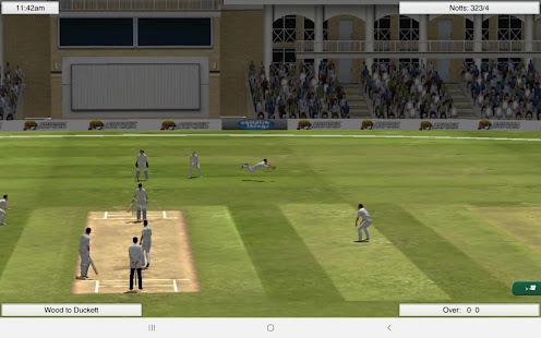 Cricket Captain 2021 1.0 Pc-softi 14