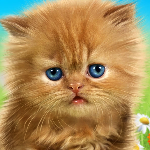 Talking baby cat😻 Talking game for kids.