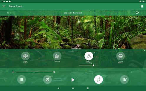 Relax Forest - Nature sounds: sleep & meditation