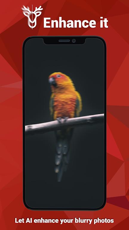 Enhance it - Fix your Photos  poster 2