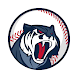 Astonishing Baseball Manager 2019 - Androidアプリ
