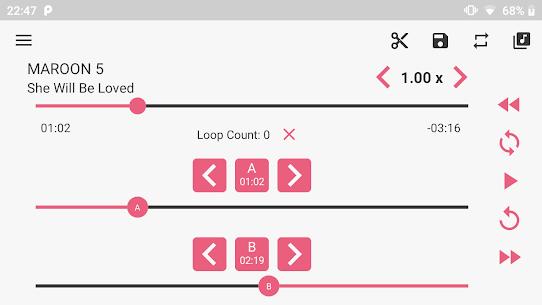 Loop Player Mod Apk (Pro Features Unlocked) 6
