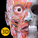解剖学 - 3Dアトラス