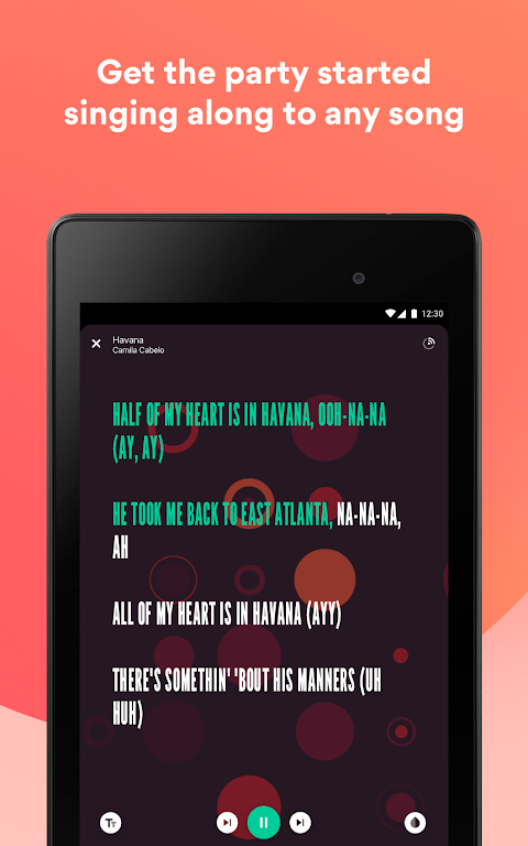 Musixmatch - Lyrics for your music poster 19