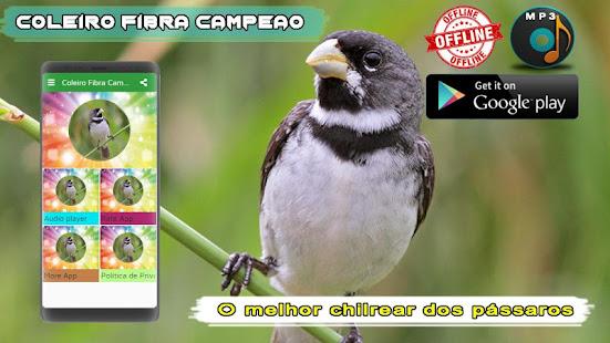 Coleiro Fibra Campeao 1.2 screenshots 2