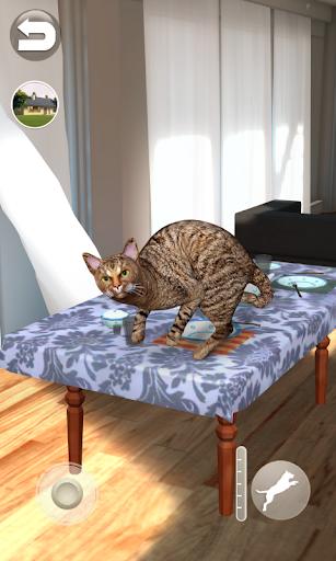 Talking Somali Cat 1.0.6 screenshots 3