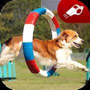 Puppy Training: Perfect Dog Trainer, Clicker App