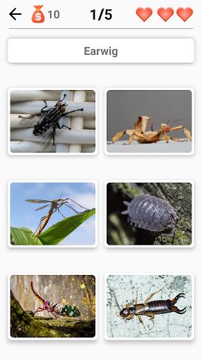 Animals -Quiz about Mammals, Birds, Fish!Zoo quiz.  screenshots 6