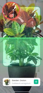 PlantIn: Identification des plantes