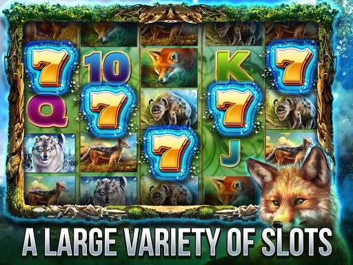 Cats Slot Machines 2.8.3600 screenshots 2