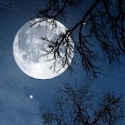 Relax Night - Nature sounds: sleep & meditation