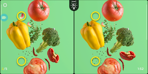 Spot the Difference - Insta Vogue 1.3.16 screenshots 16