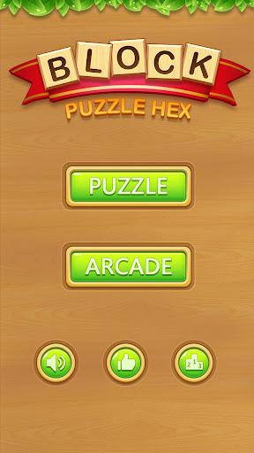 Hexa Box - Puzzle Block apkdebit screenshots 7