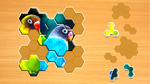 Jigsaw Puzzles Hexa ud83eudde9ud83dudd25ud83cudfaf 2.2.7 screenshots 7