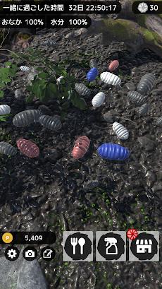 ダンゴムシといっしょ - 癒し系放置育成ゲームのおすすめ画像4