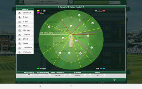 Cricket Captain 2021 1.0 Pc-softi 10