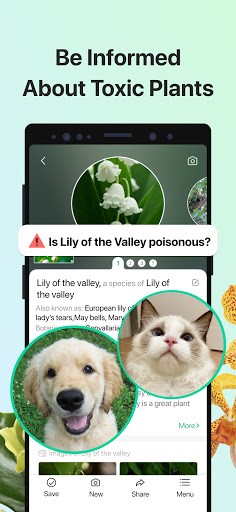 PictureThis: Identify Plant, Flower, Weed and More android2mod screenshots 3
