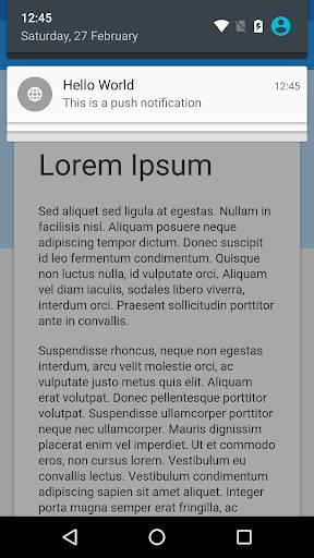 WebView App 2.7.0 Screenshots 7