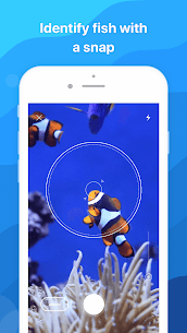 Picture Fish Mod Apk- Fish Identifier (Premium Features Unlocked) 1