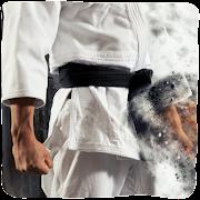 Karate Technique & Moves Guide