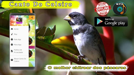 Canto De Coleiro 1.3 MOD Apk Download 1
