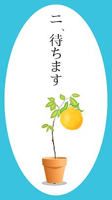 かおのなる木のおすすめ画像4