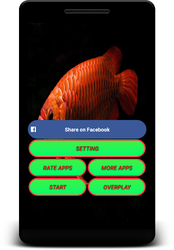 arowana live wallpaper - screen lock, sensor, auto screenshot 2