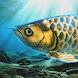 稚魚から育てるアロワナ - Androidアプリ