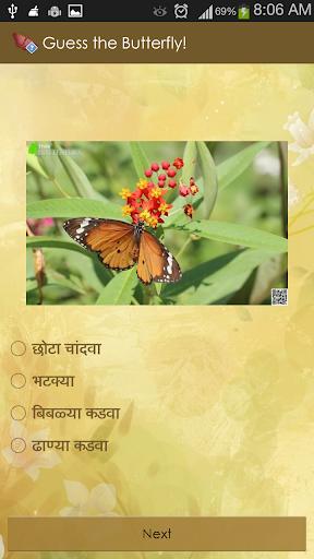 guess the butterfly-photo quiz screenshot 3