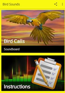 Bird Sounds Free 1