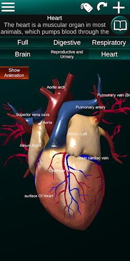 Internal Organs in 3D (Anatomy) 2.5 Screenshots 2