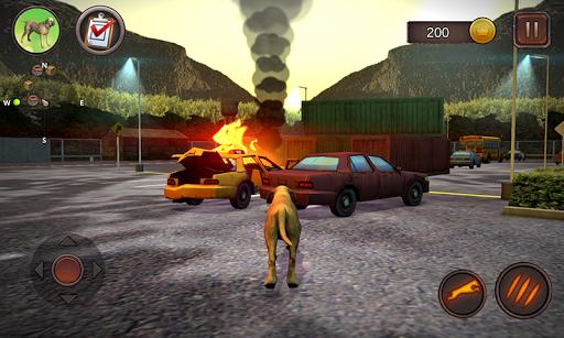 Fila Brasileiro Simulator 1.0.6 screenshots 2