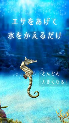 水槽がつくれる!タツノオトシゴ育成ゲームのおすすめ画像2