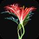 3D Flower Wallpaper Download on Windows