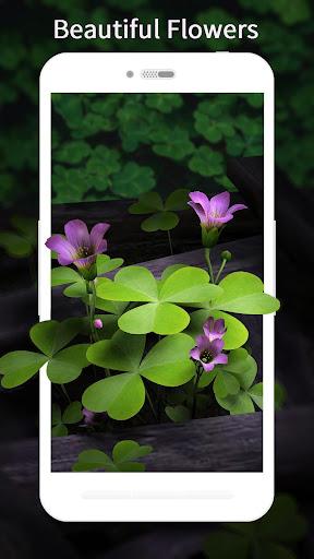3D Flowers Live Wallpaper HD 1.6.7 screenshots 3