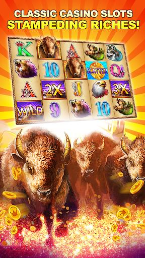 Buffalo Bonus Casino Free Slot  screenshots 1