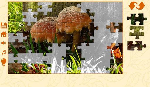 Puzzles autumn 1.2.5 screenshots 23