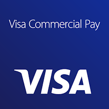 Visa Commercial Pay Download on Windows