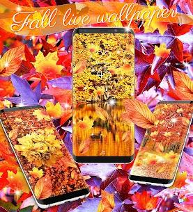 Fall season live wallpaper App Download For Pc (Windows/mac Os) 2