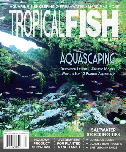 Tropical Fish Hobbyist Magazine For PC Windows (7, 8, 10, 10X) & Mac Computer Image Number- 6