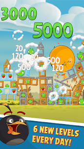 Angry Birds Classic 5