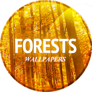 Wallpaper with forest