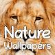 Nature Wallpaper - Papel de parede de Natureza para PC Windows