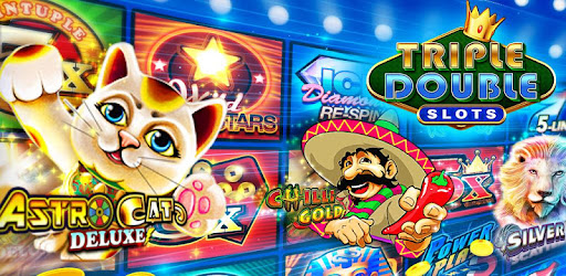 frogs n flies Casino