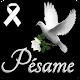Mi mas Sentido Pesame Download for PC Windows 10/8/7