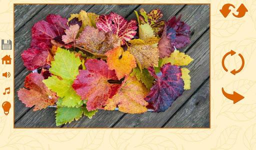 Puzzles autumn 1.2.5 screenshots 6