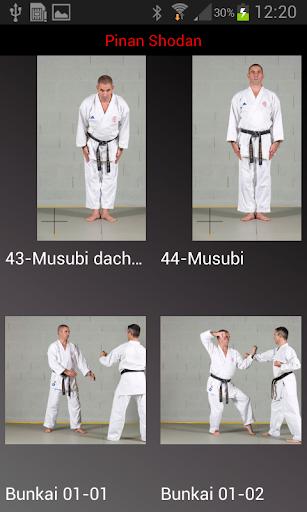 karate shito-ryu 2 screenshot 1